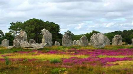 Morbihan Megalithic Sites