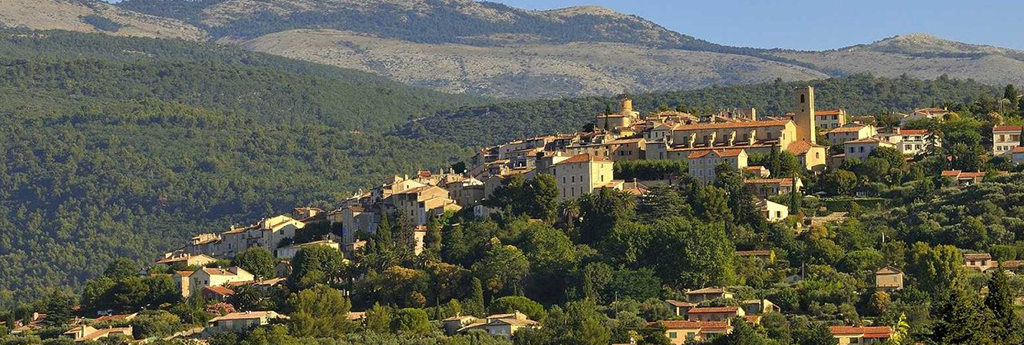 EVERYTHING YOU NEED TO KNOW ABOUT FAYENCE
